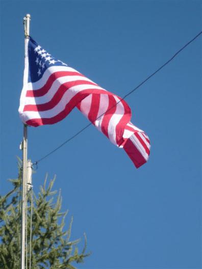 flag 008