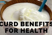 Photo of curd benefits for health
