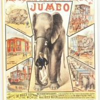 What Happened on February 3rd - Barnum Buys Jumbo the Elephant