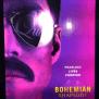 Why Everyone Should See Bohemian Rhapsody The Cardinal