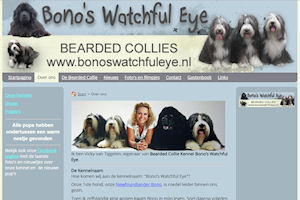 bearded.collies