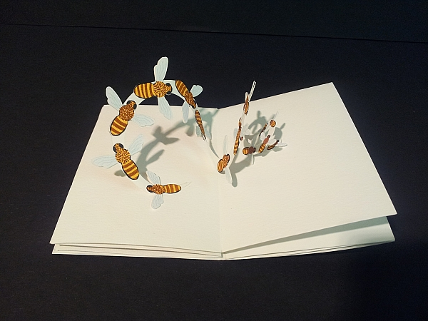 """Livre-anniversaire pop-up """"Apiculture"""", pop-up nuée d'abeilles"""
