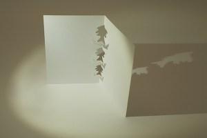 Carte kirigami Arbres, profil