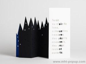 Livre d'artiste pages accordéon, Forêt de Nuit, dos