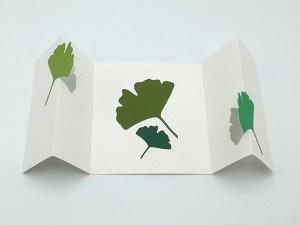 Cartes pop-up 2 volets en accordéon, motifs ginkgos en camaïeu vert, vue de face repliée