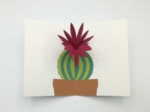 Carte pop-up Fleur de cactus, modèle orchidée rose, vue de dessus