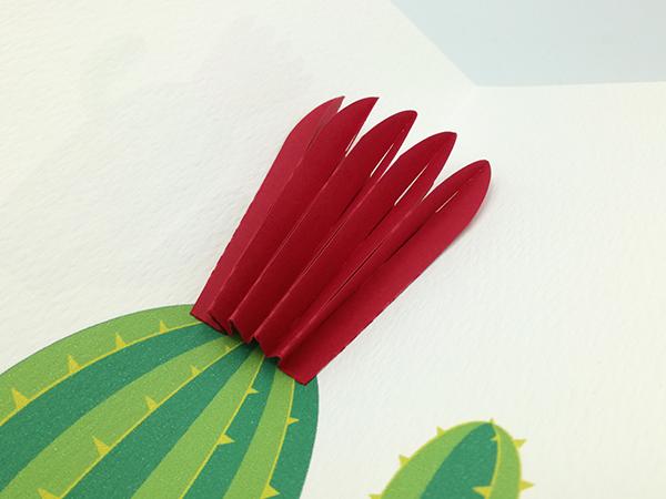 Carte pop-up Fleur de cactus, modèle fleur en éventail rouge, détail de la fleur et du cactus