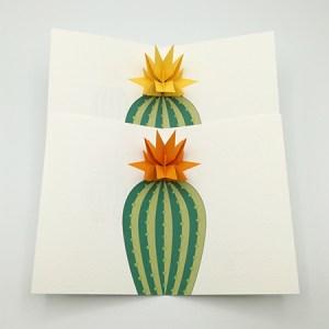 Cartes pop-up Fleur de cactus, modèle étoile, vue d'ensemble des 2 variantes