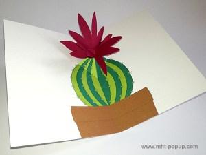 Carte pop-up Fleur de cactus, modèle rouge avec fleur en orchidée, vue de profil