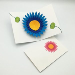 Cartes pop-up Marguerites, vue d'ensemble, carte modèle Marguerite bleue ouverte et carte modèle Marguerite rose pliée