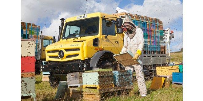 Mercedes-Benz Unimog is the 'bee's knees'