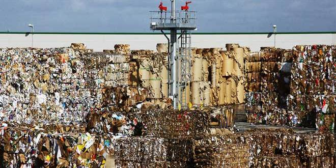 Recycle or not to recycle YouGov poll uncovers lack of understanding about food contaminated cardboard