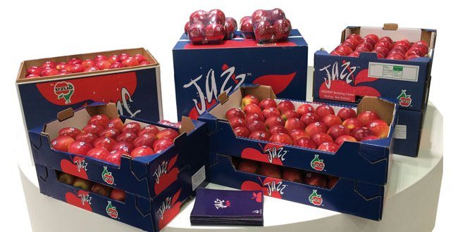Fresh corrugated packaging solutions will boost fruit & vegetable market