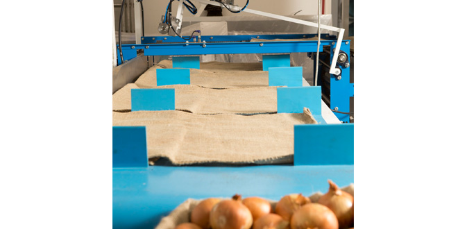 Pacepacker helps bulk baggers achieve new heights of productivity