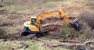 W L Straughan & Son see the wood for the trees with Hyundai fleet