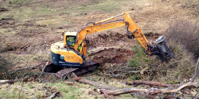 W L Straughan & Son see the wood for the trees with Hyundai fleet.