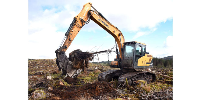 Carron Valley Plant chooses Hyundai High-Walkers for tough forestry tasks