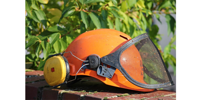 How Important Is Ear Protection?