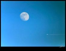 lune_9544
