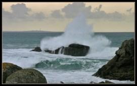 wave-1011