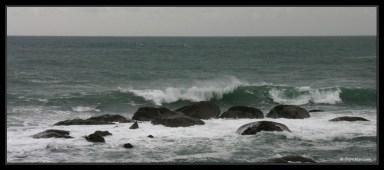 wave_0924