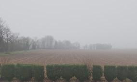 Picardie, le 2 janvier