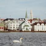 holiday in Reykjavik iceland