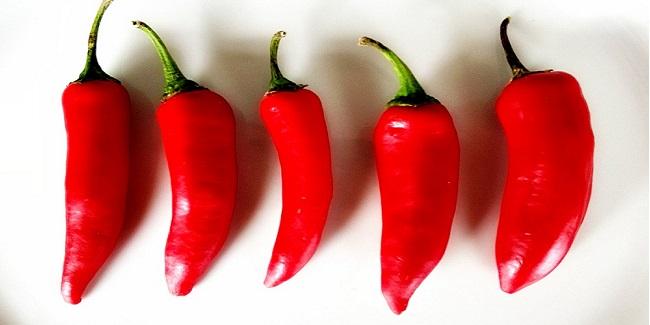 Chilis in the sun