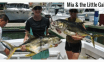 Lady-youth-salt-water-fishing-mexico-tips