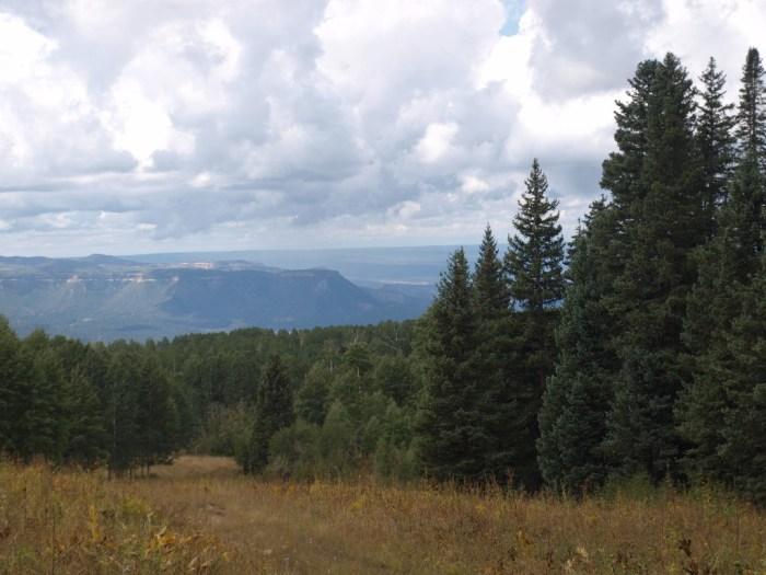 cpw-wildlife-habitat-10886c7b-13a7-417b-89ed-7ea095b23750