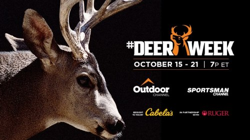 #DeerWeek Photo