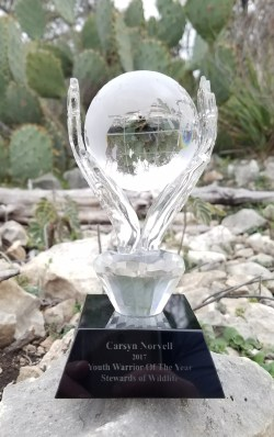 SWC Youth Warrior trophy