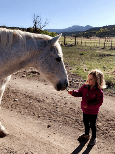 Equine-therapy-Mia-Anstine-photo