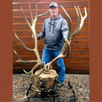 Potential New World's Record American Elk