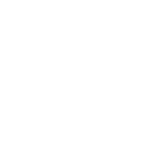 LincolnMotor