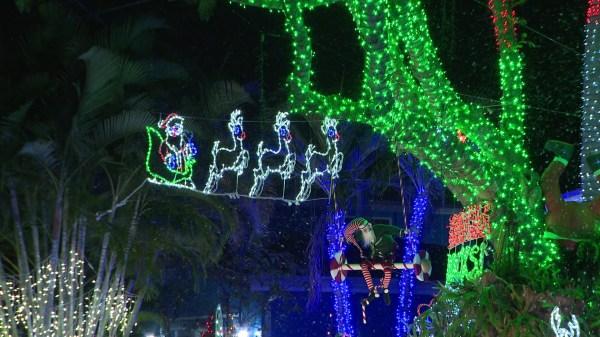 christmas lights miami # 6