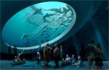Visiting Miami Science Museum And Planetarium