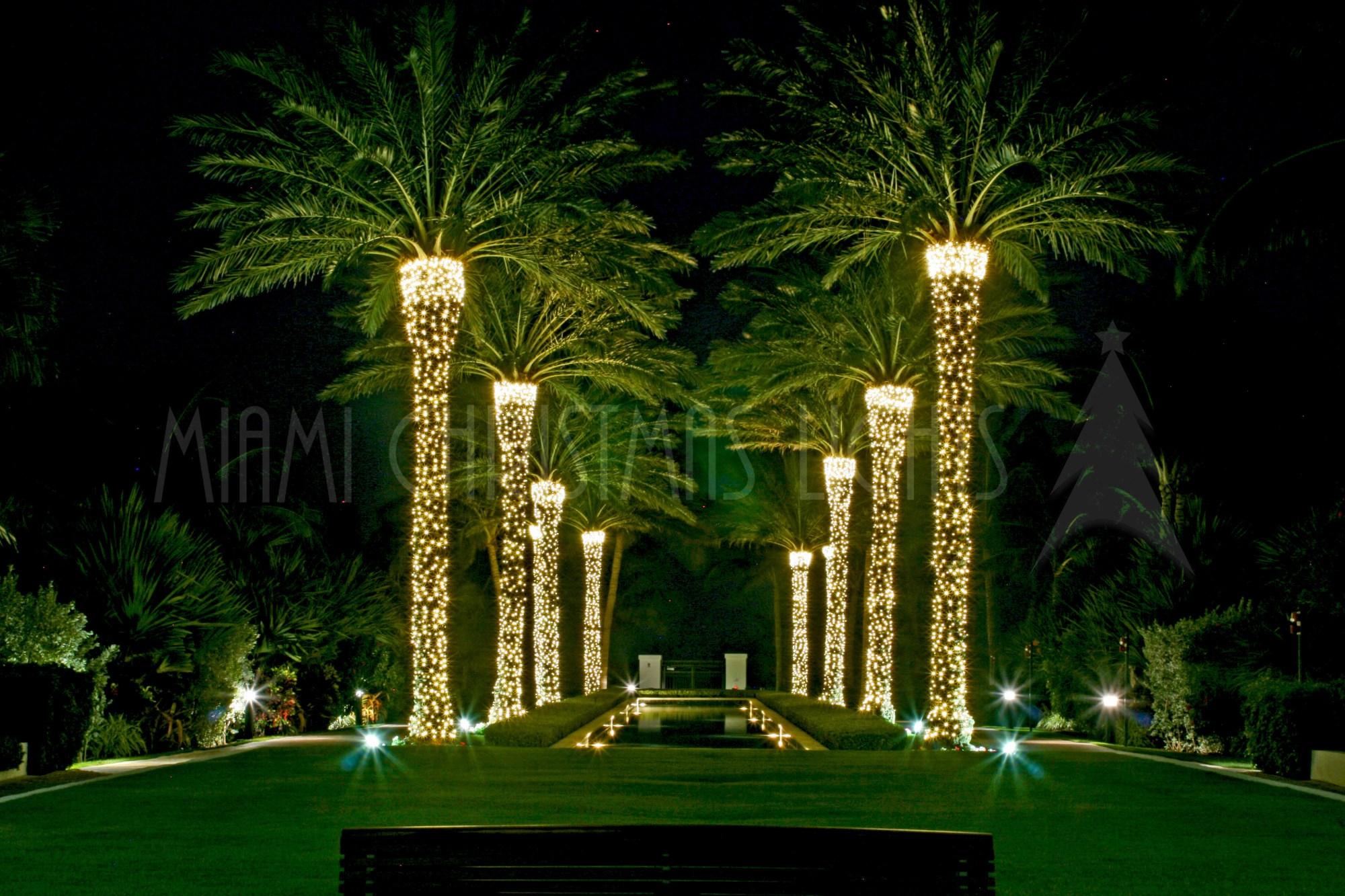 hight resolution of elegant accent lighting