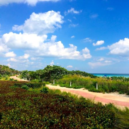 North Beach Boardwalk