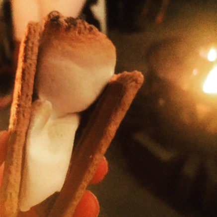 S'Mores Under the Moonlight (Copyright Miamicito)