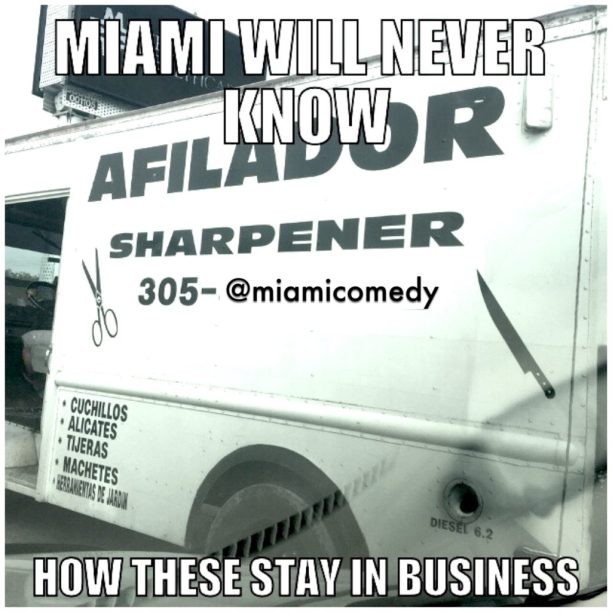100 Miami Memes and Jokes