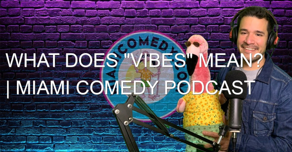 "What does ""vibes"" mean? 