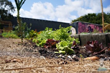 Wynwood Yard - Community Garden
