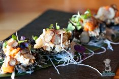 Tanuki - Sea Urchin Rice Cracker