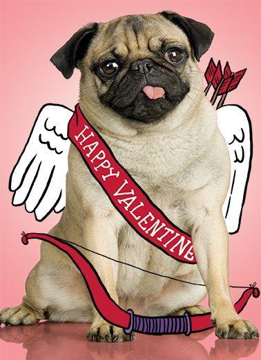 Where To Celebrate Valentines Day 2017 Miami Food Pug
