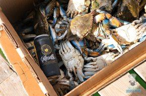 Stiltsville - Stiltsville Crabs