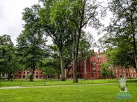 Harvard - Campus