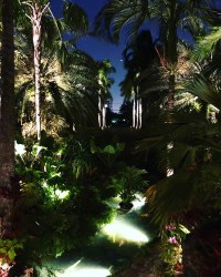 Services | Miami Landscape Lighting