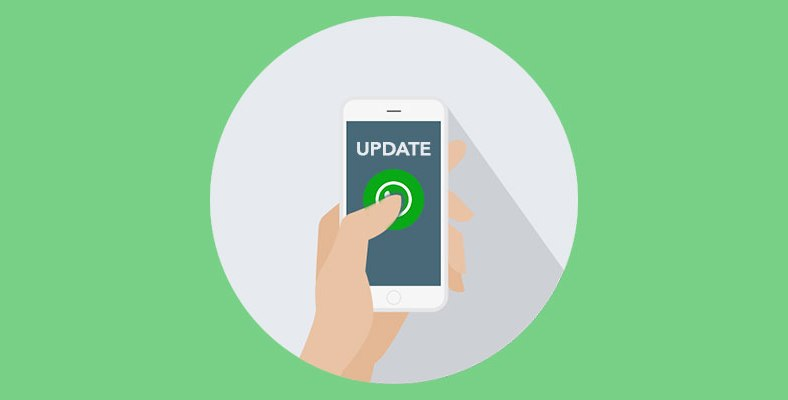 WhatsApp Not Working on Latest iOS Update - Miami Morning Star