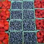 Farmers markets throughout Miami – VIDEO